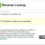 Best Free Anywho Reverse Lookup Sites You Should Know About